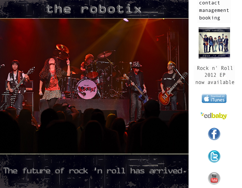 website2013 600 775 home   the robotix